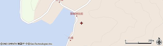 大分県佐伯市米水津大字小浦423周辺の地図