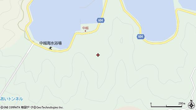 大分県佐伯市鶴見大字中越浦201周辺の地図