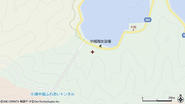 大分県佐伯市鶴見大字中越浦中津浦周辺の地図