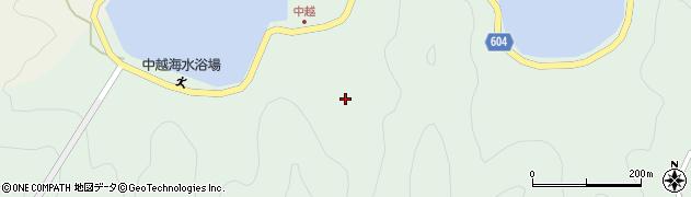大分県佐伯市鶴見大字中越浦200周辺の地図
