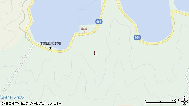 大分県佐伯市鶴見大字中越浦198周辺の地図