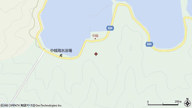 大分県佐伯市鶴見大字中越浦152周辺の地図