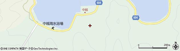 大分県佐伯市鶴見大字中越浦161周辺の地図