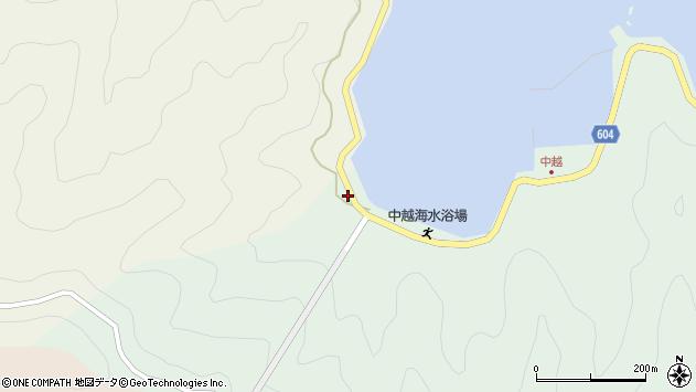 大分県佐伯市鶴見大字中越浦46周辺の地図