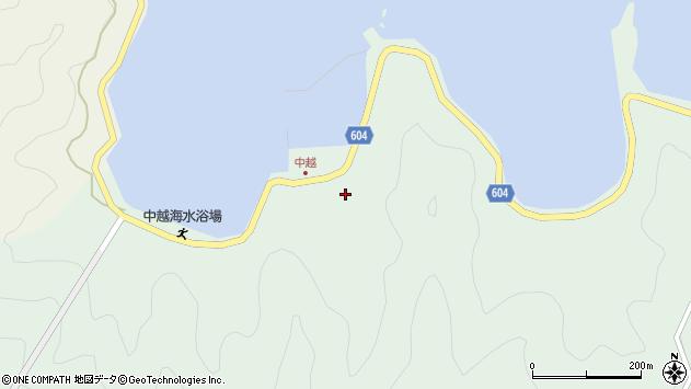 大分県佐伯市鶴見大字中越浦256周辺の地図