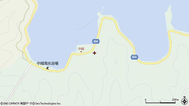 大分県佐伯市鶴見大字中越浦259周辺の地図