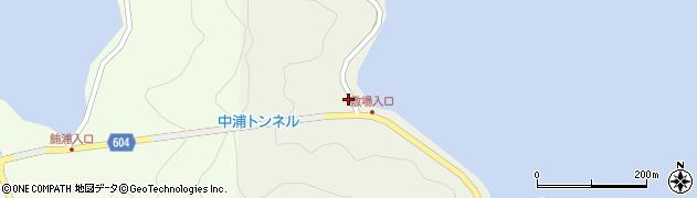 大分県佐伯市鶴見大字羽出浦299周辺の地図