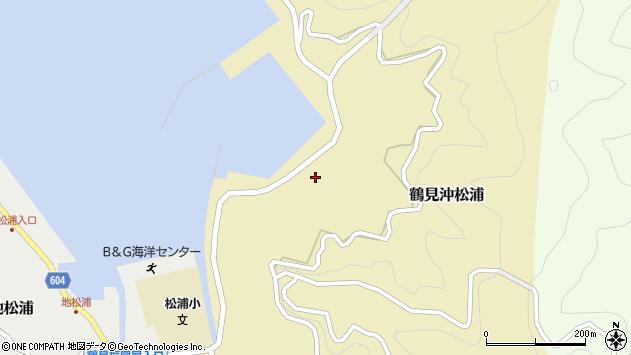 大分県佐伯市鶴見大字沖松浦980周辺の地図