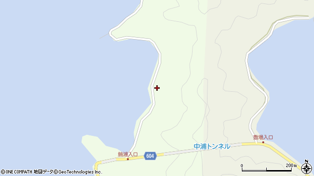 大分県佐伯市鶴見大字有明浦1252周辺の地図
