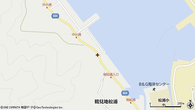 大分県佐伯市鶴見大字地松浦389周辺の地図