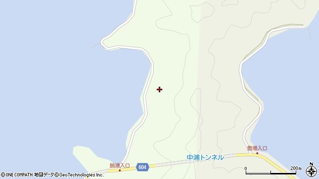 大分県佐伯市鶴見大字有明浦1374周辺の地図