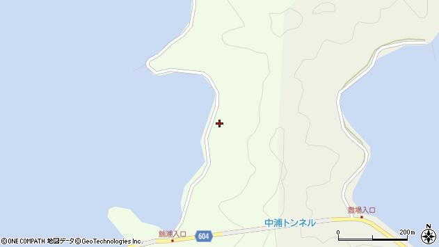 大分県佐伯市鶴見大字有明浦1377周辺の地図