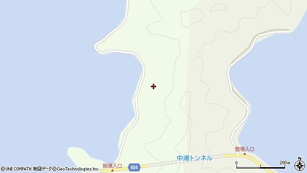 大分県佐伯市鶴見大字有明浦1348周辺の地図