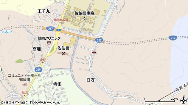 大分県佐伯市鶴望4051周辺の地図