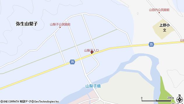 大分県佐伯市弥生大字山梨子1423周辺の地図