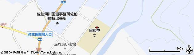 大分県佐伯市弥生大字井崎781周辺の地図