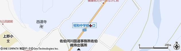 大分県佐伯市弥生大字井崎1256周辺の地図