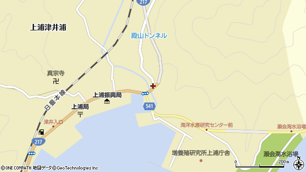 大分県佐伯市上浦大字津井浦247周辺の地図