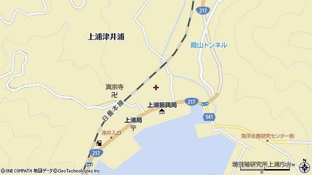 大分県佐伯市上浦大字津井浦1338周辺の地図