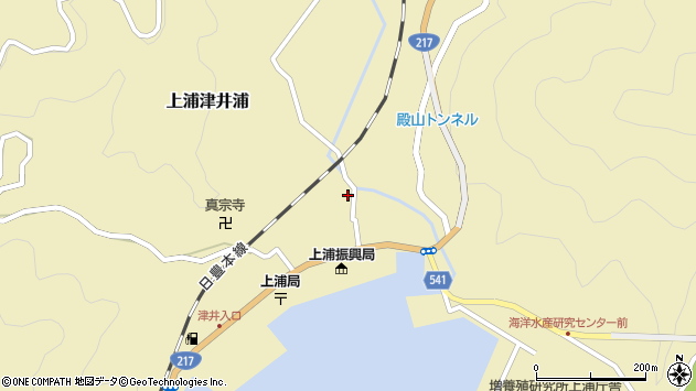 大分県佐伯市上浦大字津井浦1246周辺の地図