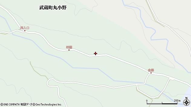 大分県国東市武蔵町丸小野1947周辺の地図