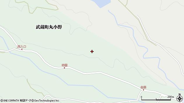 大分県国東市武蔵町丸小野仲西周辺の地図