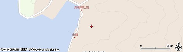 大分県佐伯市米水津大字小浦483周辺の地図