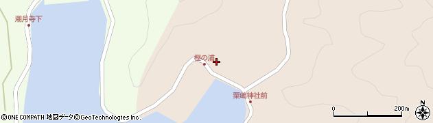 大分県佐伯市米水津大字小浦40周辺の地図