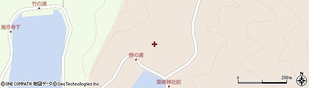 大分県佐伯市米水津大字小浦114周辺の地図