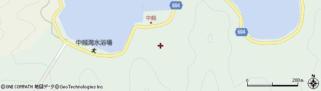 大分県佐伯市鶴見大字中越浦189周辺の地図