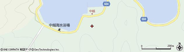 大分県佐伯市鶴見大字中越浦167周辺の地図