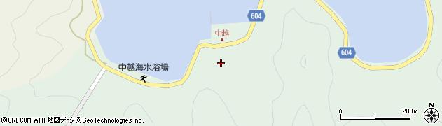 大分県佐伯市鶴見大字中越浦173周辺の地図