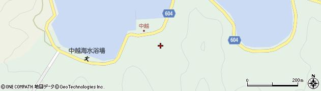 大分県佐伯市鶴見大字中越浦252周辺の地図