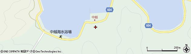 大分県佐伯市鶴見大字中越浦175周辺の地図