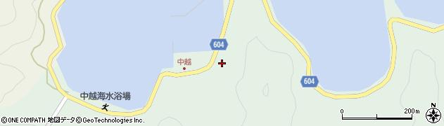 大分県佐伯市鶴見大字中越浦92周辺の地図
