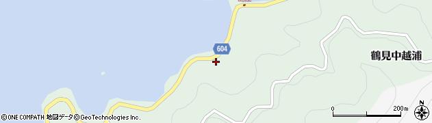 大分県佐伯市鶴見大字中越浦451周辺の地図