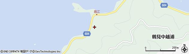 大分県佐伯市鶴見大字中越浦484周辺の地図