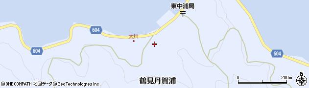 大分県佐伯市鶴見大字丹賀浦156周辺の地図