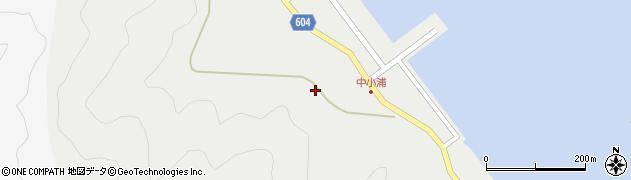 大分県佐伯市鶴見大字地松浦中小浦周辺の地図