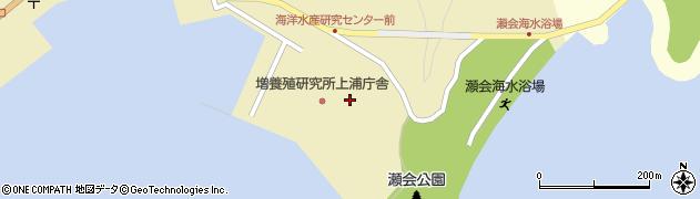 大分県佐伯市上浦大字津井浦162周辺の地図
