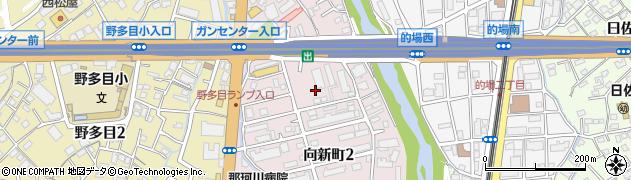福岡県福岡市南区向新町周辺の地図