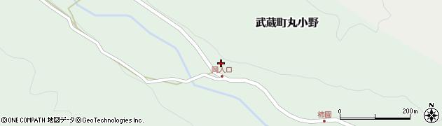大分県国東市武蔵町丸小野1719周辺の地図