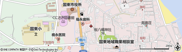 大分県国東市国東町鶴川191周辺の地図
