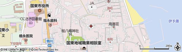 大分県国東市国東町鶴川223周辺の地図