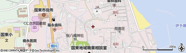 大分県国東市国東町鶴川250周辺の地図