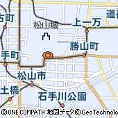 ANAクラウンプラザホテル松山(旧松山全日空ホテル)