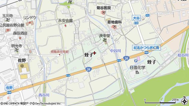 〒649-7172 和歌山県伊都郡かつらぎ町蛭子の地図