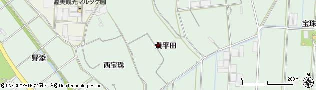 愛知県田原市赤羽根町(茂平田)周辺の地図