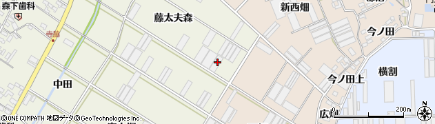 愛知県田原市中山町(藤太夫森)周辺の地図