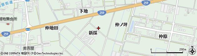 愛知県田原市大久保町(新採)周辺の地図